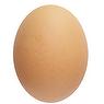 Egg - Whole - Raw - Fresh